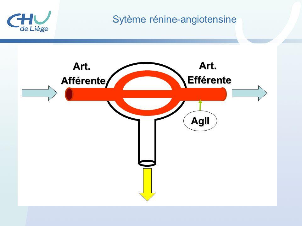 Sytème rénine-angiotensine Art.Afférente Art.Efférente AgII