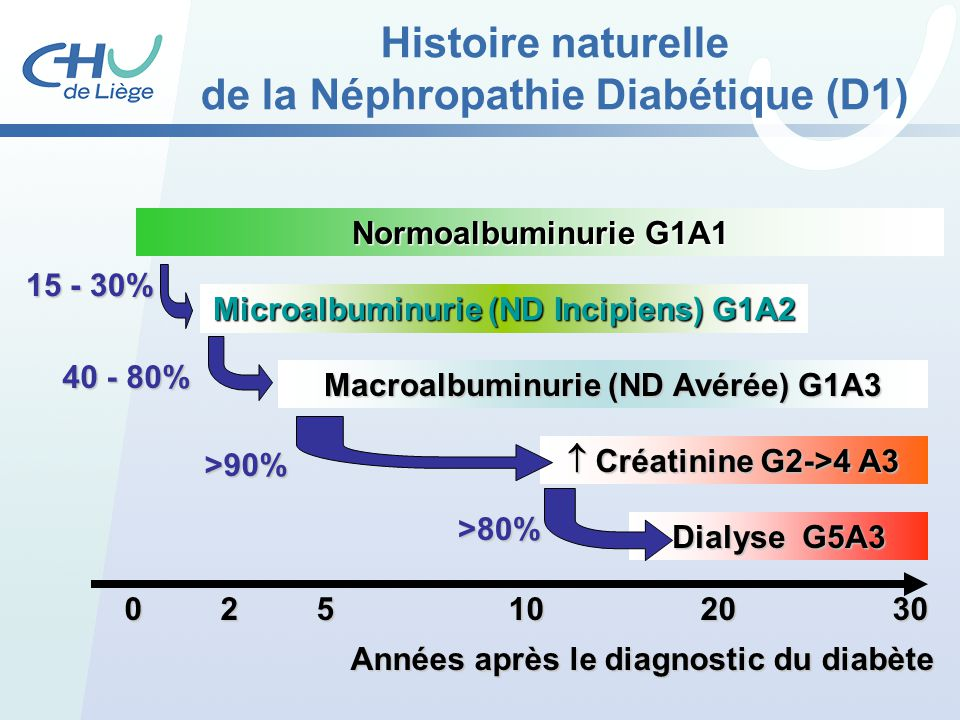 025102030 Années après le diagnostic du diabète Normoalbuminurie G1A1 Microalbuminurie (ND Incipiens) G1A2 Macroalbuminurie (ND Avérée) G1A3 Créatinin