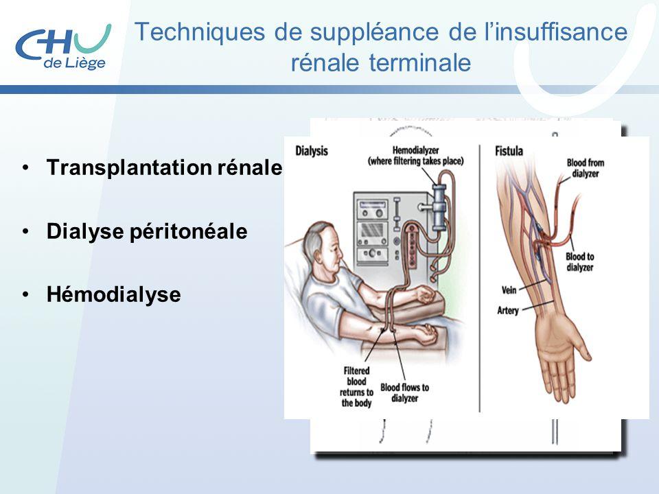 Techniques de suppléance de linsuffisance rénale terminale Transplantation rénale Dialyse péritonéale Hémodialyse