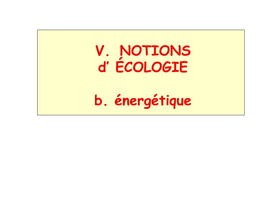 V. NOTIONS d ÉCOLOGIE b. énergétique