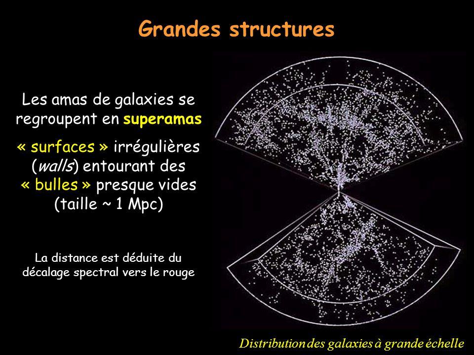 Grandes structures Distribution des galaxies à grande échelle Les amas de galaxies se regroupent en superamas « surfaces » irrégulières (walls) entour