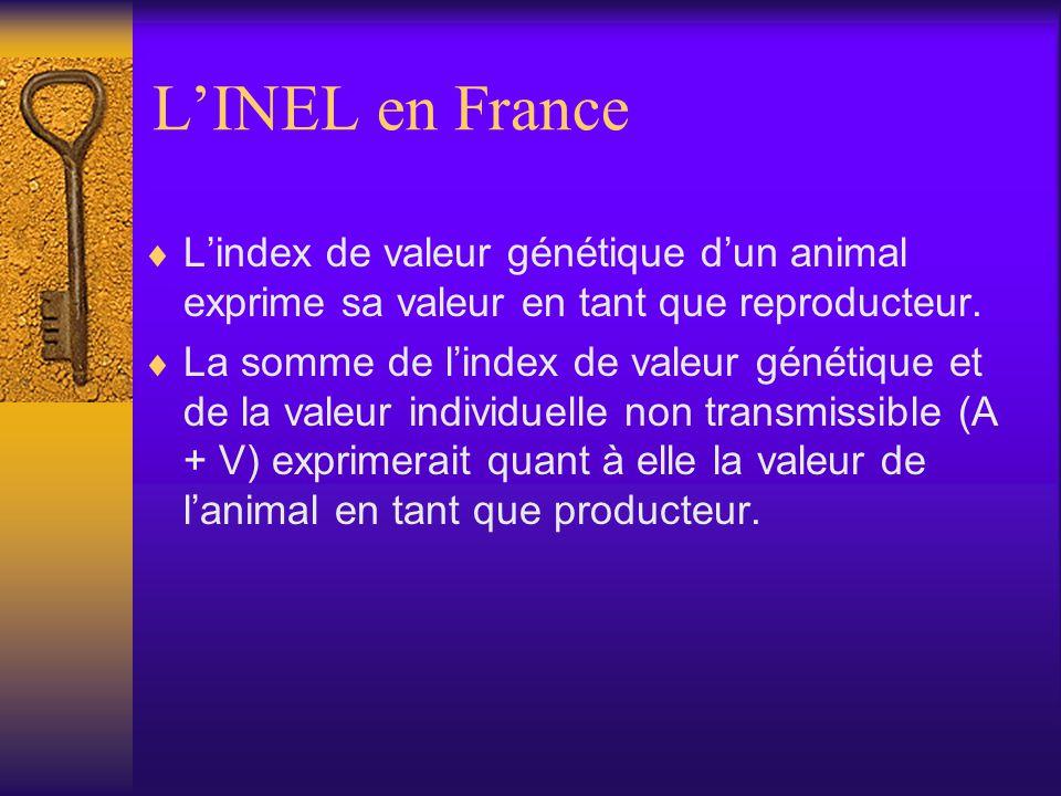 LINEL en France Lindex de valeur génétique dun animal exprime sa valeur en tant que reproducteur. La somme de lindex de valeur génétique et de la vale