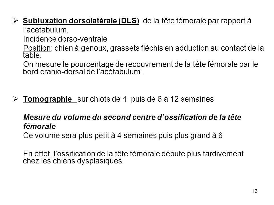 16 Subluxation dorsolatérale (DLS) de la tête fémorale par rapport à lacétabulum. Incidence dorso-ventrale Position; chien à genoux, grassets fléchis