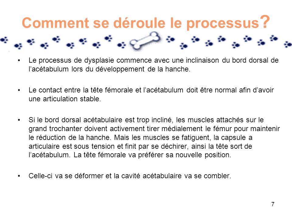 7 Comment se déroule le processus ? Le processus de dysplasie commence avec une inclinaison du bord dorsal de lacétabulum lors du développement de la
