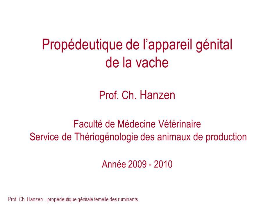 Prof. Ch. Hanzen – propédeutique génitale femelle des ruminants Propédeutique de lappareil génital de la vache Prof. Ch. Hanzen Faculté de Médecine Vé