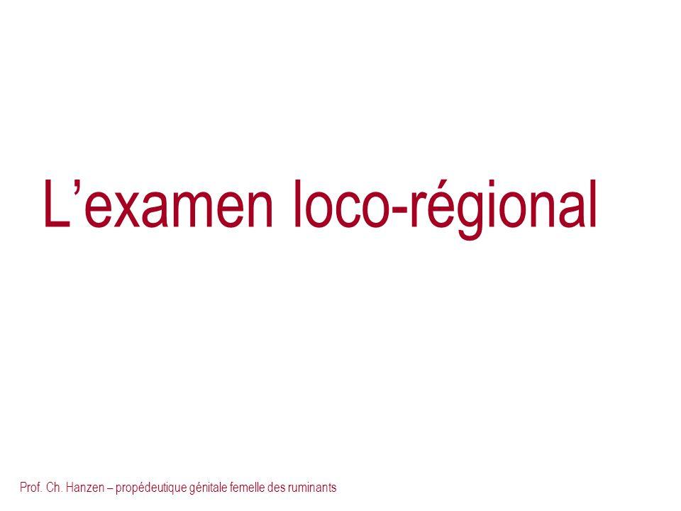Prof. Ch. Hanzen – propédeutique génitale femelle des ruminants Lexamen loco-régional