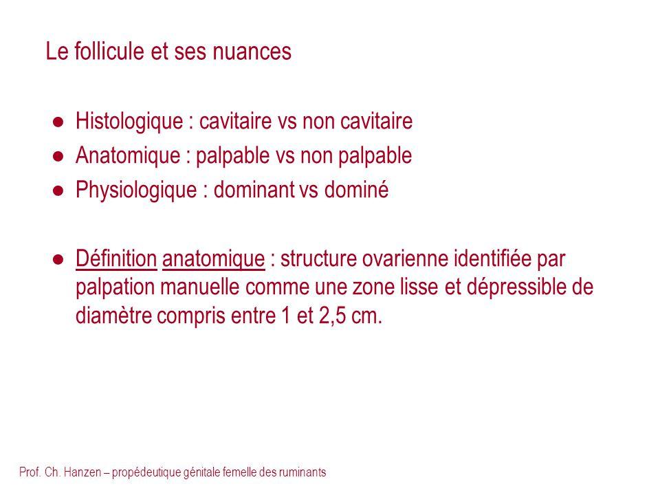 Prof. Ch. Hanzen – propédeutique génitale femelle des ruminants Le follicule et ses nuances Histologique : cavitaire vs non cavitaire Anatomique : pal