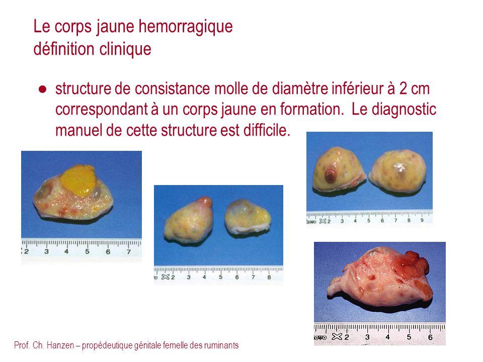 Prof. Ch. Hanzen – propédeutique génitale femelle des ruminants Le corps jaune hemorragique définition clinique structure de consistance molle de diam