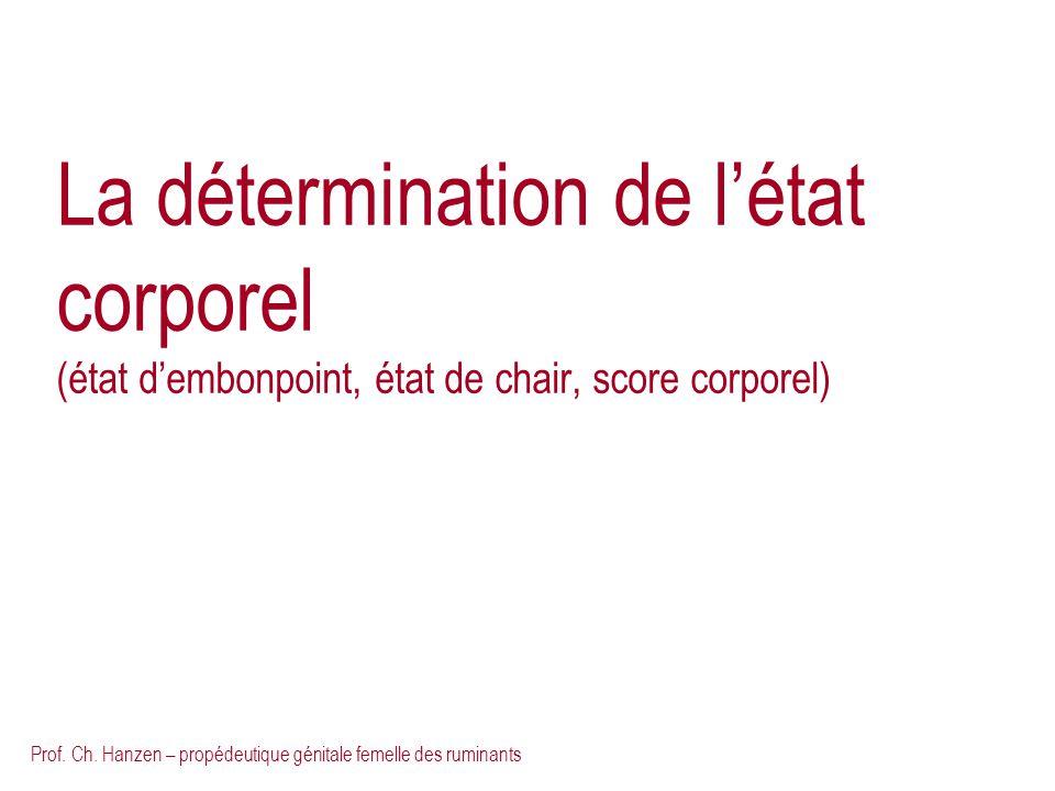 Prof. Ch. Hanzen – propédeutique génitale femelle des ruminants La détermination de létat corporel (état dembonpoint, état de chair, score corporel)