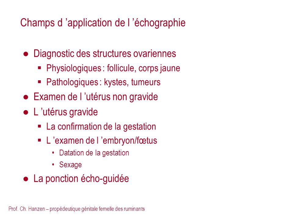 Prof. Ch. Hanzen – propédeutique génitale femelle des ruminants Champs d application de l échographie Diagnostic des structures ovariennes Physiologiq