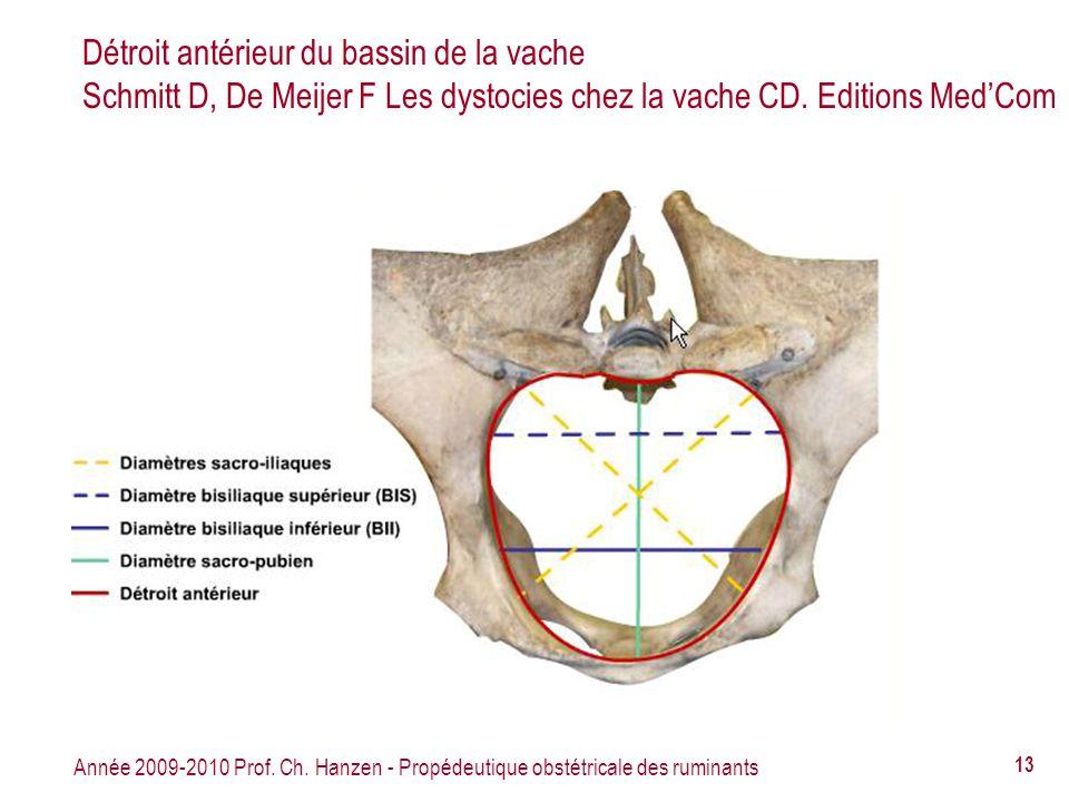 Année 2009-2010 Prof. Ch. Hanzen - Propédeutique obstétricale des ruminants 13 Détroit antérieur du bassin de la vache Schmitt D, De Meijer F Les dyst