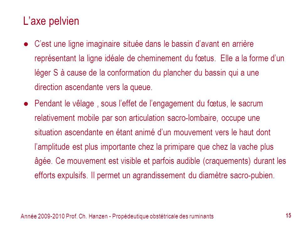 Année 2009-2010 Prof. Ch. Hanzen - Propédeutique obstétricale des ruminants 15 Laxe pelvien Cest une ligne imaginaire située dans le bassin davant en