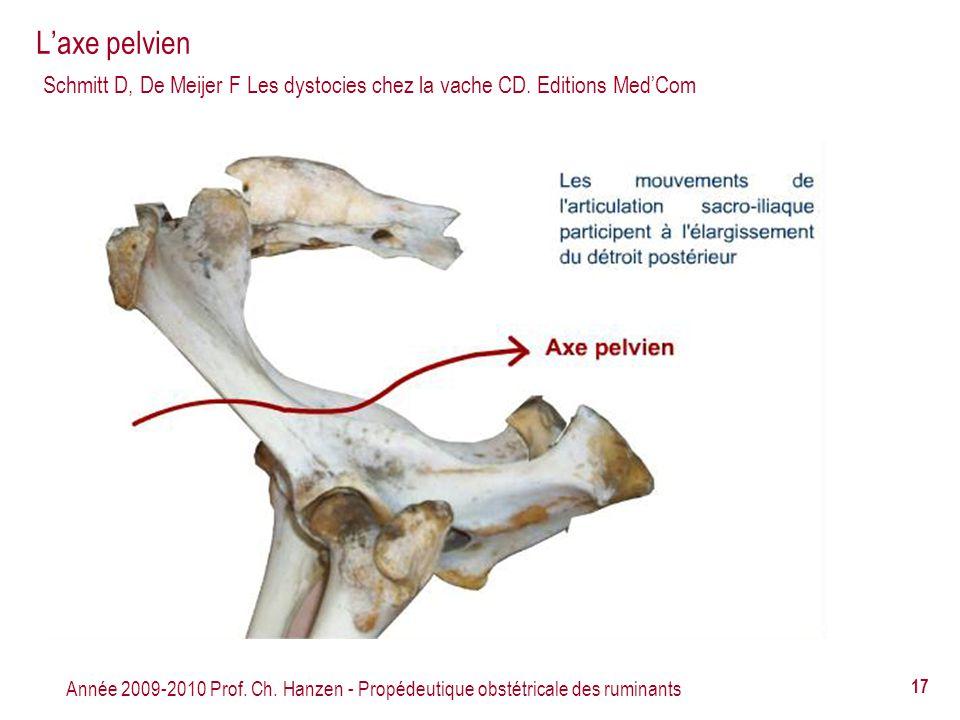 Année 2009-2010 Prof. Ch. Hanzen - Propédeutique obstétricale des ruminants 17 Laxe pelvien Schmitt D, De Meijer F Les dystocies chez la vache CD. Edi