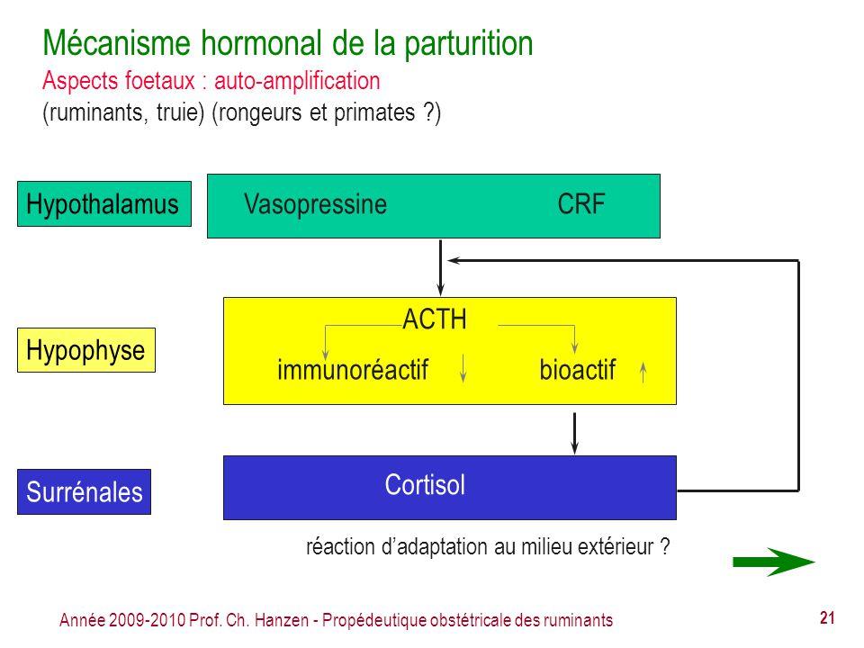 Année 2009-2010 Prof. Ch. Hanzen - Propédeutique obstétricale des ruminants 21 Mécanisme hormonal de la parturition Aspects foetaux : auto-amplificati