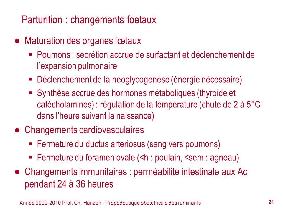 Année 2009-2010 Prof. Ch. Hanzen - Propédeutique obstétricale des ruminants 24 Parturition : changements foetaux Maturation des organes fœtaux Poumons
