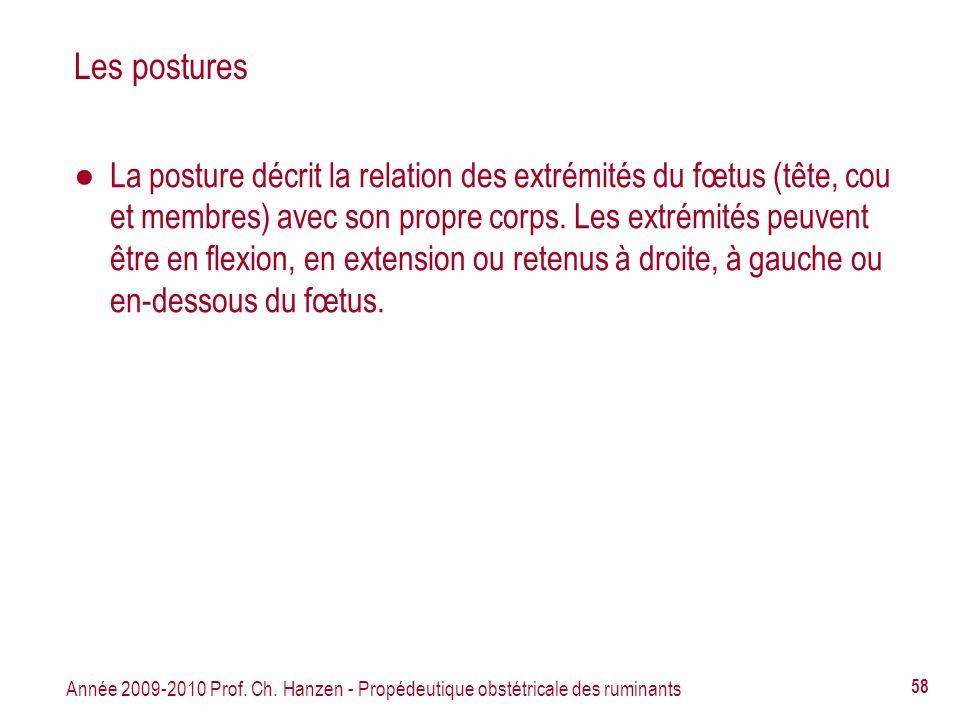 Année 2009-2010 Prof. Ch. Hanzen - Propédeutique obstétricale des ruminants 58 Les postures La posture décrit la relation des extrémités du fœtus (têt