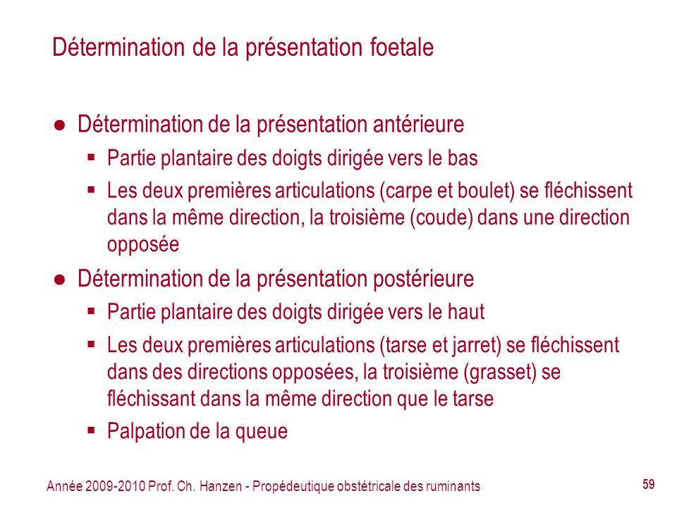 Année 2009-2010 Prof. Ch. Hanzen - Propédeutique obstétricale des ruminants 59 Détermination de la présentation foetale Détermination de la présentati