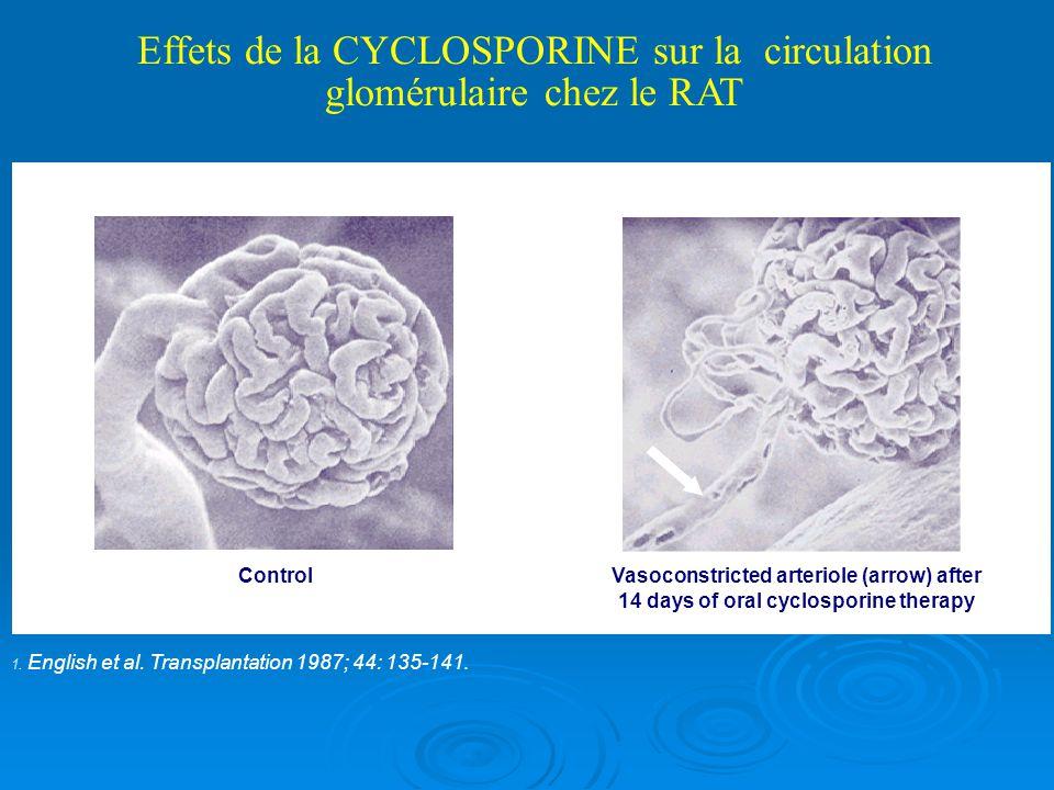 Immunosuppression initiale: stratification selon le risque immunologique Haut risque de rejet si 3ème-4ème greffe rénale Présence dAcs anti-HLA 5 ou 6 incompatiblités HLA ATG + Tacrolimus + MPA + stéroides Faible risque dans les autres cas (attention: âge - ethnie) Anti-IL2R + Tacrolimus + MPA + stéroides