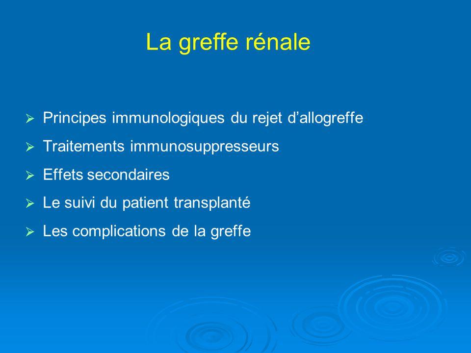 Phénomène du rejet dallo-greffe: Activation du Lymphocyte T IL 2, IL 2-R, TNF,etc IL 2 CD3 TCR HLA Cellule présentatrice dantigène Calcineurine CD 4/8 CD 28 B7