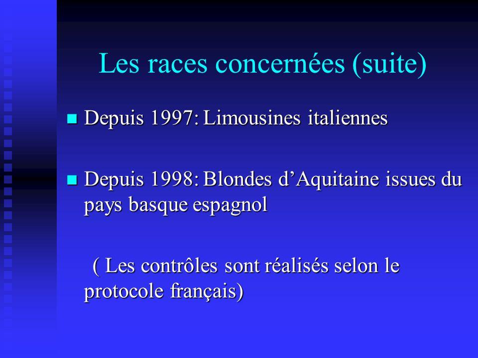 Les races concernées (suite) Depuis 1997: Limousines italiennes Depuis 1997: Limousines italiennes Depuis 1998: Blondes dAquitaine issues du pays basq