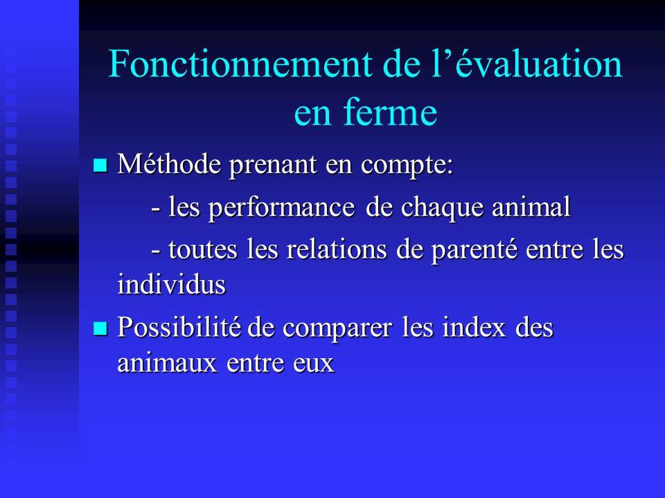 Fonctionnement de lévaluation en ferme Méthode prenant en compte: Méthode prenant en compte: - les performance de chaque animal - les performance de chaque animal - toutes les relations de parenté entre les individus - toutes les relations de parenté entre les individus Possibilité de comparer les index des animaux entre eux Possibilité de comparer les index des animaux entre eux
