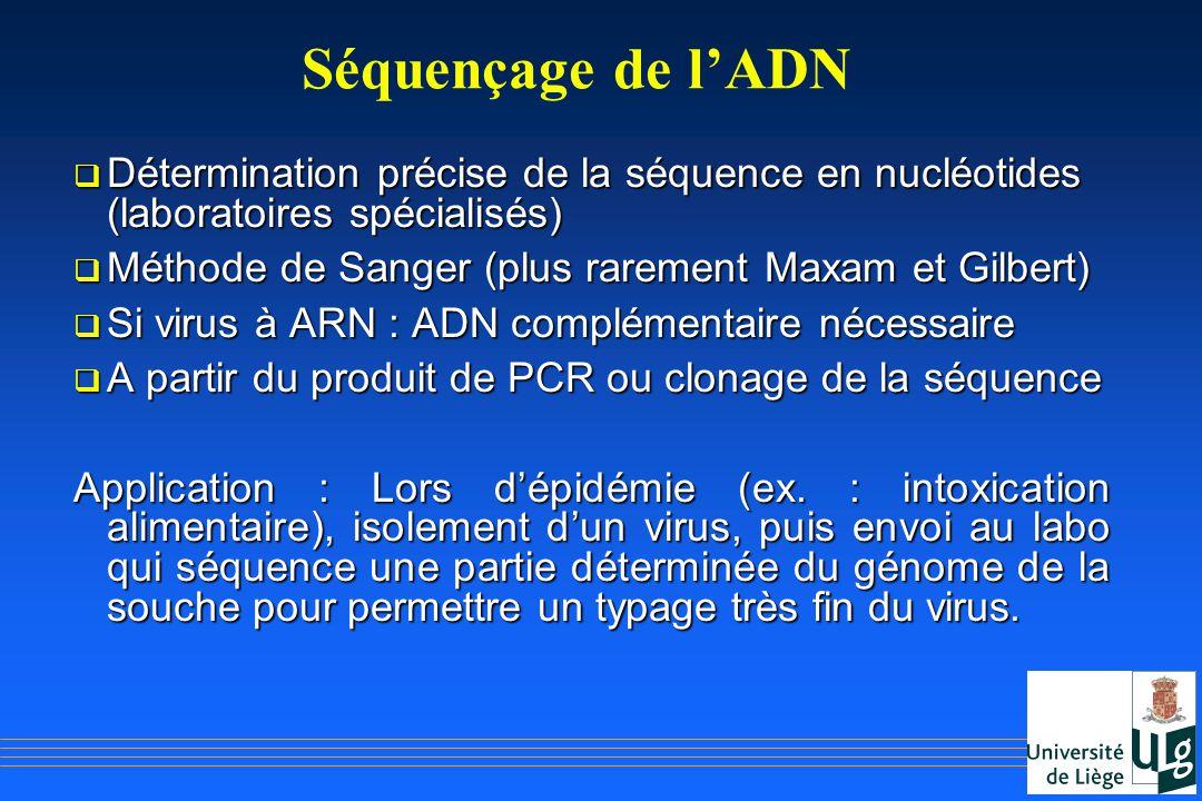 Séquençage de lADN Détermination précise de la séquence en nucléotides (laboratoires spécialisés) Détermination précise de la séquence en nucléotides