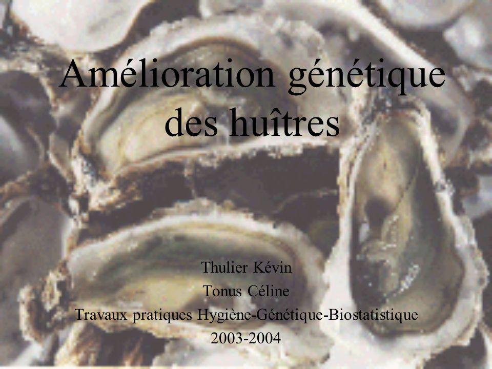 Amélioration génétique des huîtres Thulier Kévin Tonus Céline Travaux pratiques Hygiène-Génétique-Biostatistique 2003-2004