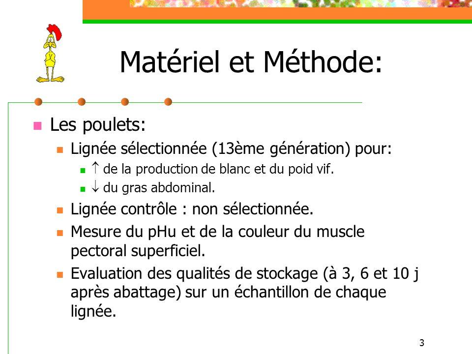 3 Matériel et Méthode: Les poulets: Lignée sélectionnée (13ème génération) pour: de la production de blanc et du poid vif. du gras abdominal. Lignée c