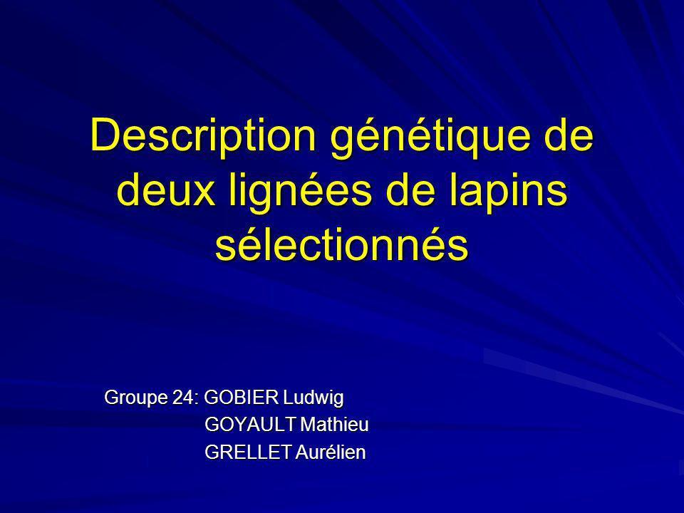Description génétique de deux lignées de lapins sélectionnés Groupe 24: GOBIER Ludwig GOYAULT Mathieu GOYAULT Mathieu GRELLET Aurélien GRELLET Aurélie