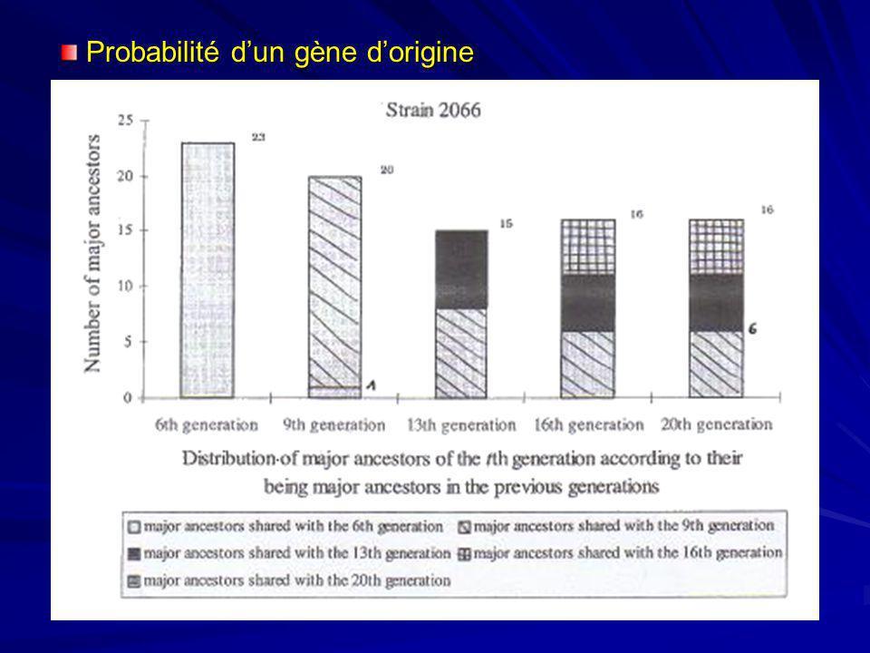 Probabilité dun gène dorigine Probabilité dun gène dorigine – certains fondateurs ont une plus grande influence – diminution régulière du nombre effic