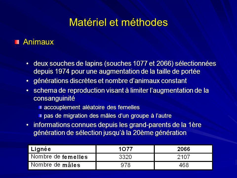 Matériel et méthodes Animaux deux souches de lapins (souches 1077 et 2066) sélectionnées depuis 1974 pour une augmentation de la taille de portéedeux