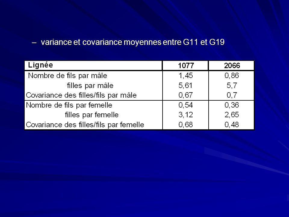 –variance et covariance moyennes entre G11 et G19