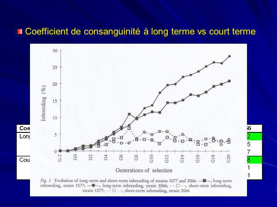 –consanguinité à long terme en augmentation régulière chez les deux souches augmentation plus forte dans la souche 2066 –consanguinité à court terme s