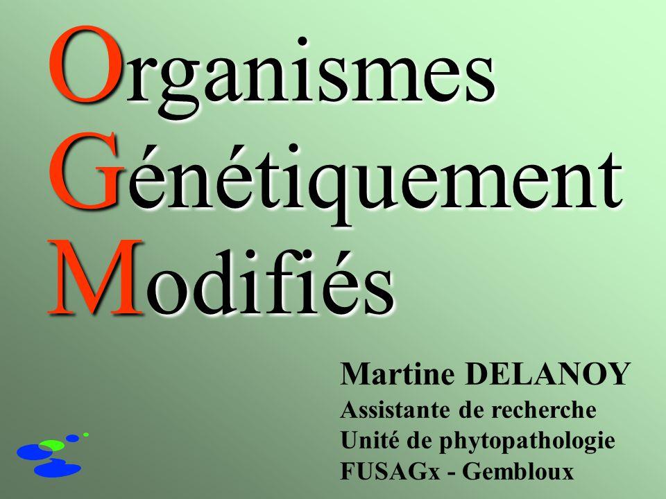 Martine DELANOY Assistante de recherche Unité de phytopathologie FUSAGx - Gembloux O rganismes G énétiquement M odifiés