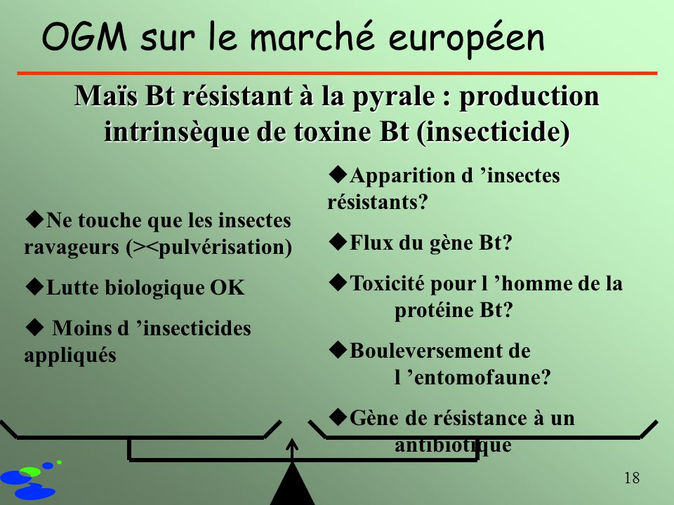 18 OGM sur le marché européen Maïs Bt résistant à la pyrale : production intrinsèque de toxine Bt (insecticide) uNe touche que les insectes ravageurs