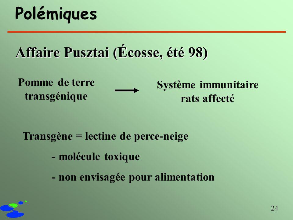 24 Polémiques Affaire Pusztai (Écosse, été 98) Pomme de terre transgénique Système immunitaire rats affecté Transgène = lectine de perce-neige - moléc
