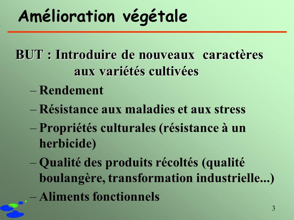 3 Amélioration végétale BUT : Introduire de nouveaux caractères aux variétés cultivées –Rendement –Résistance aux maladies et aux stress –Propriétés c
