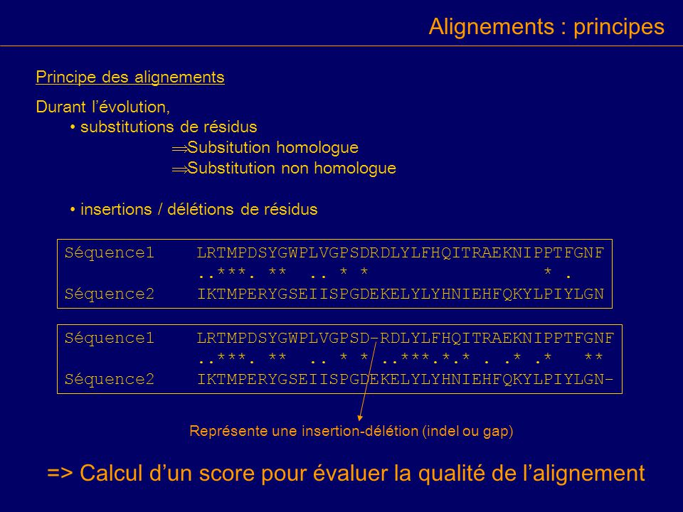 Alignements : principes Principe des alignements Durant lévolution, substitutions de résidus Subsitution homologue Substitution non homologue insertio