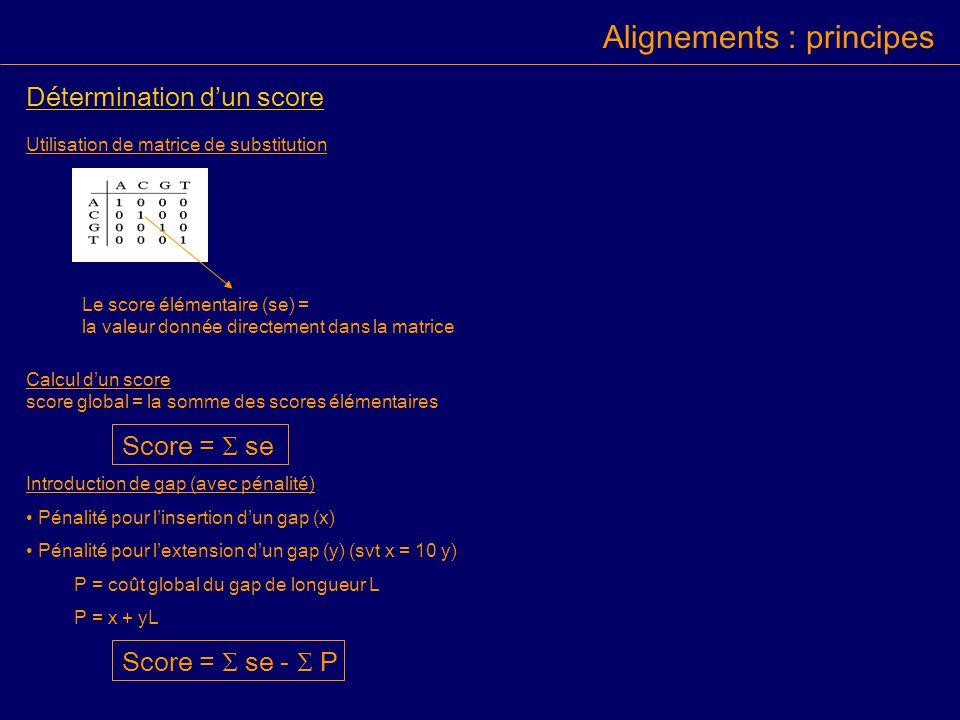 Détermination dun score Utilisation de matrice de substitution Calcul dun score score global = la somme des scores élémentaires Score = se Introduction de gap (avec pénalité) Pénalité pour linsertion dun gap (x) Pénalité pour lextension dun gap (y) (svt x = 10 y) P = coût global du gap de longueur L P = x + yL Score = se - P Le score élémentaire (se) = la valeur donnée directement dans la matrice Alignements : principes