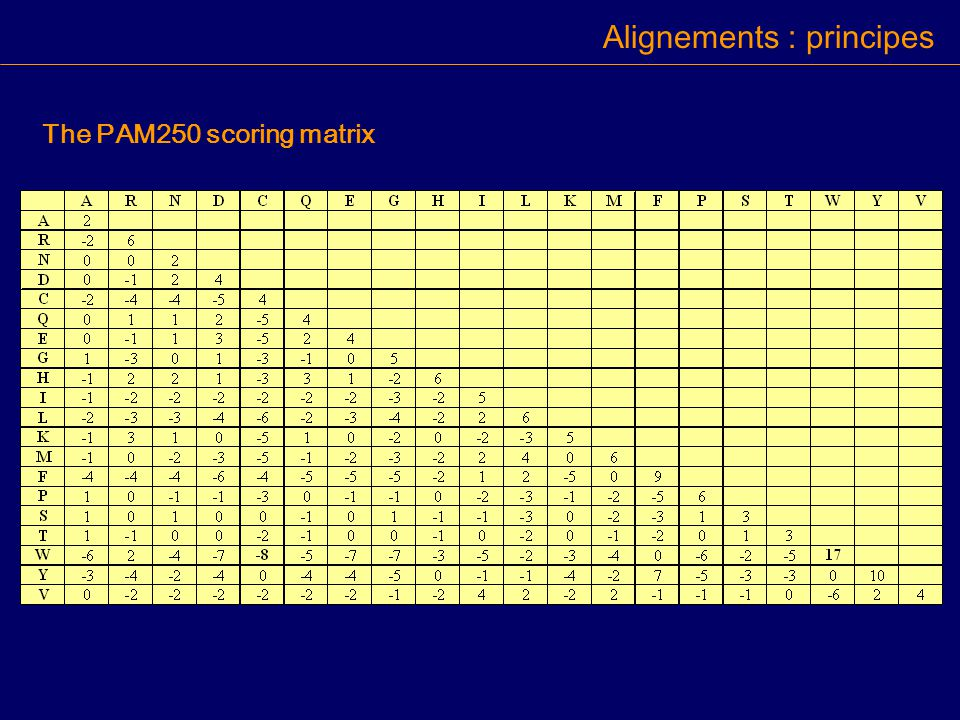 The PAM250 scoring matrix Alignements : principes