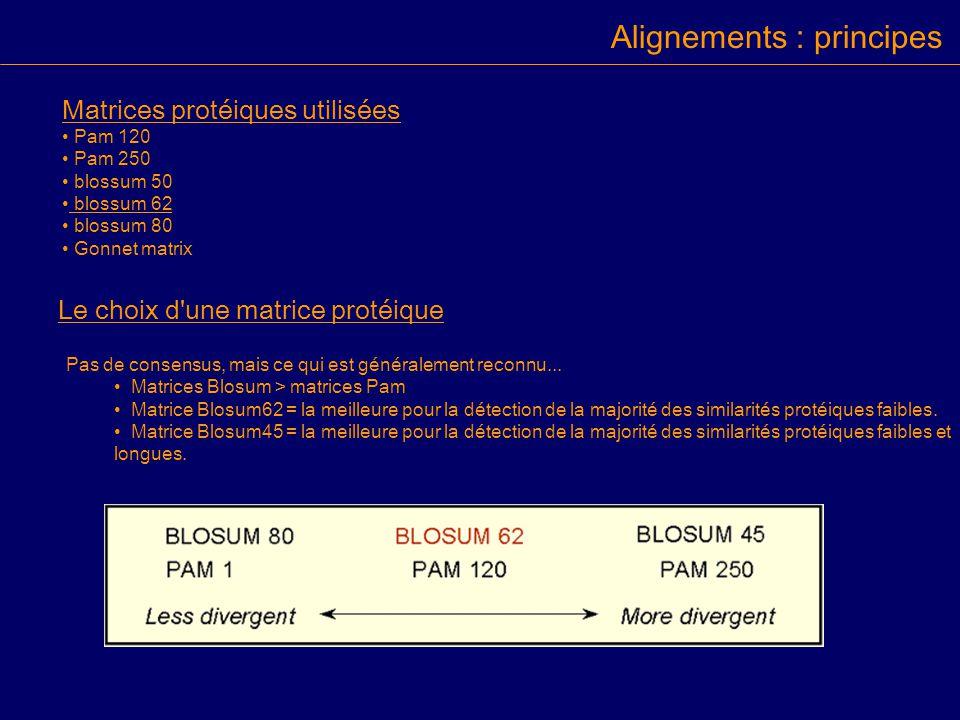 Matrices protéiques utilisées Pam 120 Pam 250 blossum 50 blossum 62 blossum 80 Gonnet matrix Le choix d une matrice protéique Pas de consensus, mais ce qui est généralement reconnu...