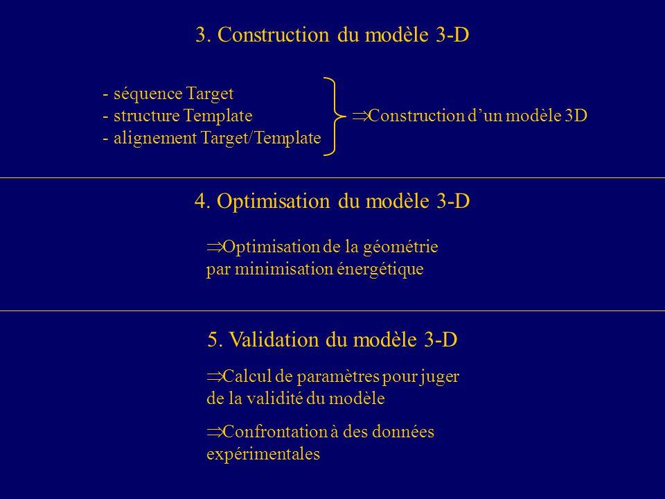 Construction dun modèle 3D - séquence Target - structure Template - alignement Target/Template 3.