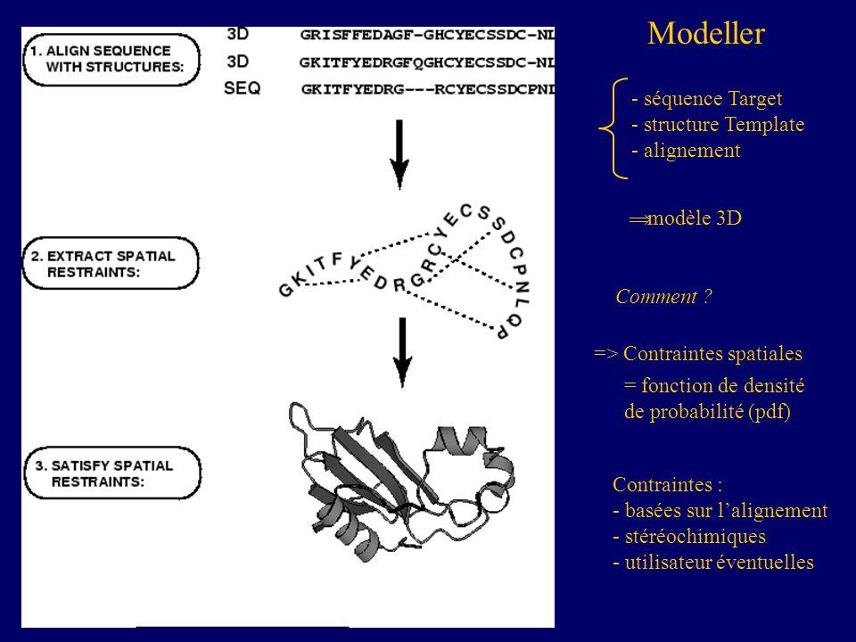=> Contraintes spatiales = fonction de densité de probabilité (pdf) Contraintes : - basées sur lalignement - stéréochimiques - utilisateur éventuelles Modeller Comment .
