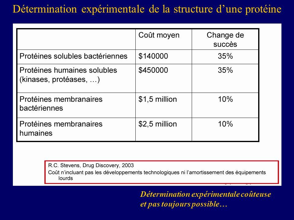 Détermination expérimentale coûteuse et pas toujours possible… Détermination expérimentale de la structure dune protéine