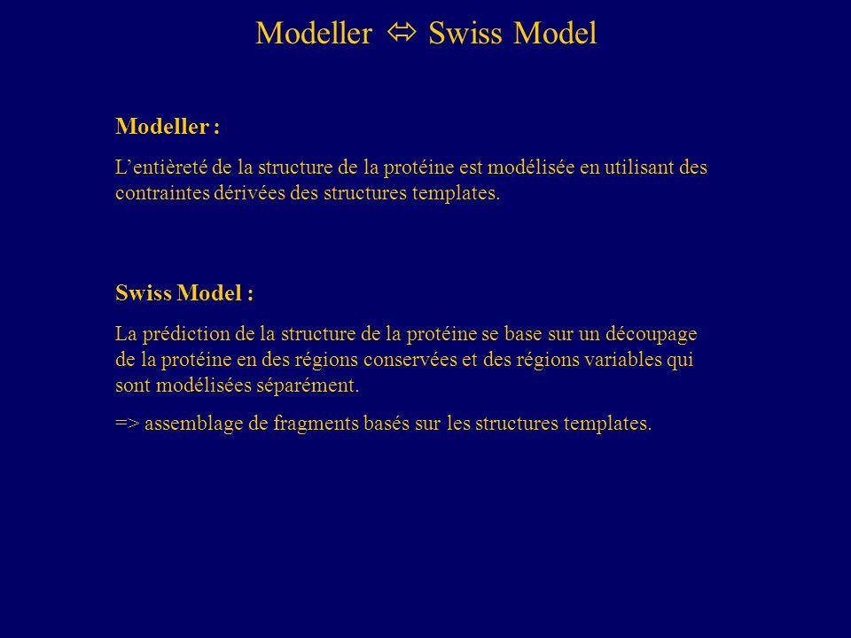 Modeller Swiss Model Modeller : Lentièreté de la structure de la protéine est modélisée en utilisant des contraintes dérivées des structures templates.