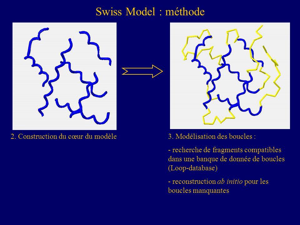 Swiss Model : méthode 2.Construction du cœur du modèle3.