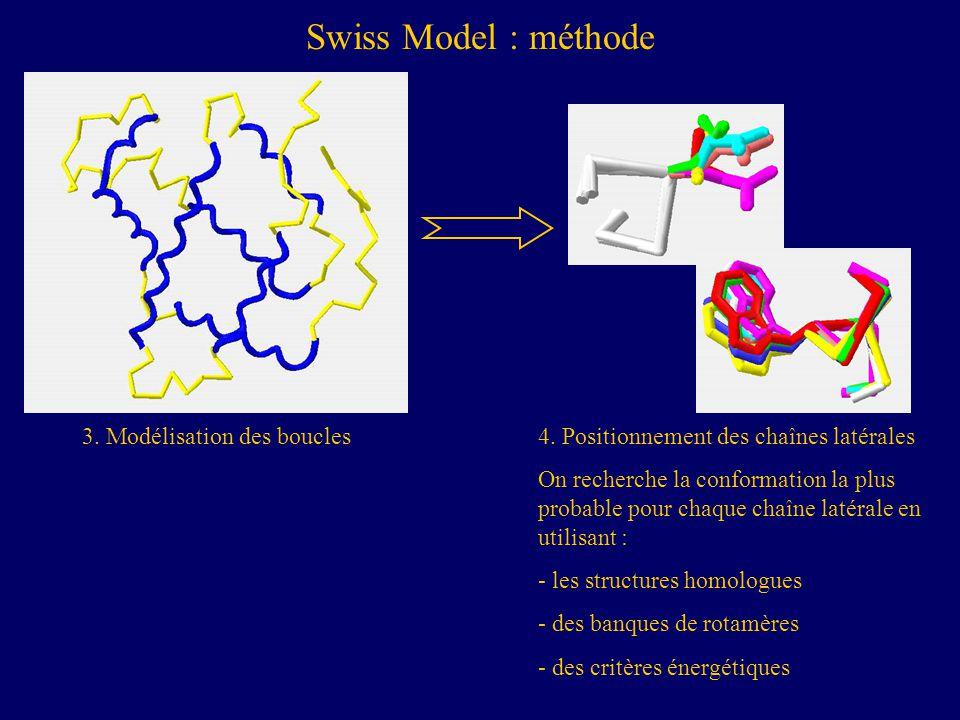 4. Positionnement des chaînes latérales On recherche la conformation la plus probable pour chaque chaîne latérale en utilisant : - les structures homo