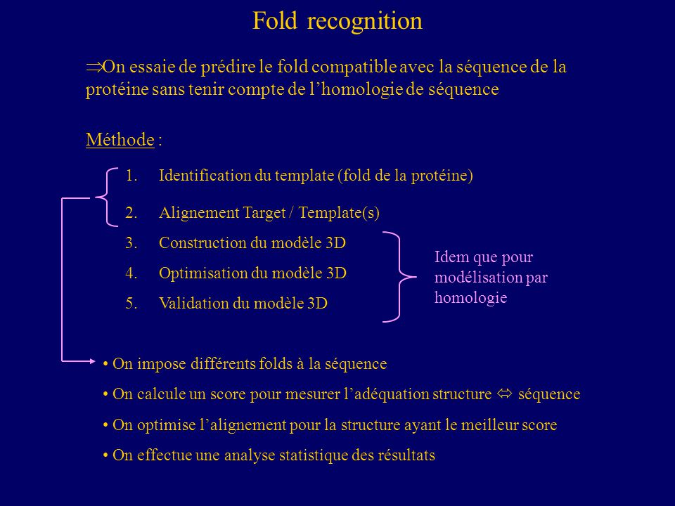 Fold recognition 1.Identification du template (fold de la protéine) 2.Alignement Target / Template(s) 3.Construction du modèle 3D 4.Optimisation du mo