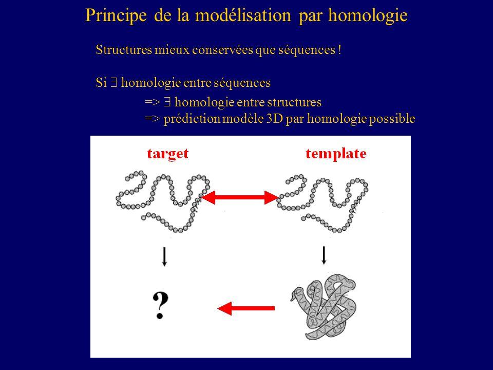 Principe de la modélisation par homologie Structures mieux conservées que séquences .