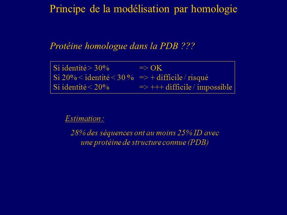 Si identité > 30% => OK Si 20% + difficile / risqué Si identité +++ difficile / impossible Estimation : 28% des séquences ont au moins 25% ID avec une protéine de structure connue (PDB) Protéine homologue dans la PDB ??.